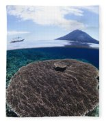 Indonesia, Coral Reef Fleece Blanket