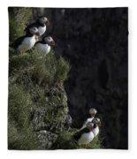 Ingolfshofthi Puffins Iceland 2898 Fleece Blanket