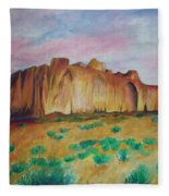 Inscription Rock  Fleece Blanket