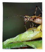 Insect And Morning Dew Fleece Blanket