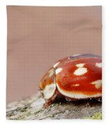 Insect Fleece Blanket