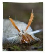 Insect Larvae With Hairdo Fleece Blanket