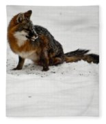Intent Red Fox Fleece Blanket