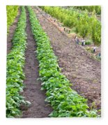 Intercropped Trees And Beans Fleece Blanket