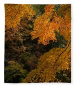 Into The Fall Fleece Blanket