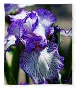 Iris Dressed For Royalty Fleece Blanket