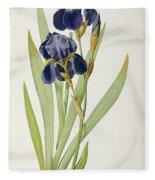 Iris Germanica Fleece Blanket