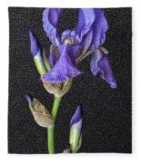 Iris On Black Leather Fleece Blanket