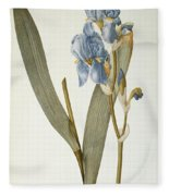 Iris Pallida Fleece Blanket