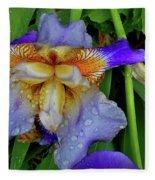 Iris Rain Blue Fleece Blanket