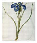Iris Xyphioides Fleece Blanket