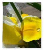 Irises Artwork Iris Flowers Art Prints Flower Rain Drops Floral Botanical Art Baslee Troutman Fleece Blanket