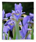 Irises Flowers Art Prints Blue Purple Iris Floral Baslee Troutman Fleece Blanket