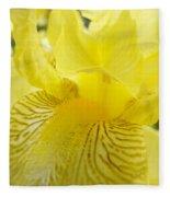 Irises Yellow Brown Iris Flowers Irises Art Prints Baslee Troutman Fleece Blanket