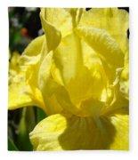 Irises Yellow Iris Flowers Floral Art Prints Botanical Garden Artwork Giclee Fleece Blanket