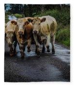 Irish Traffic Jam Fleece Blanket by James Truett