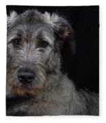 Irish Wolfhound Droc Vi Fleece Blanket