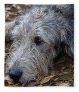 Irish Wolfhound Ivan Fleece Blanket