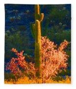 Ironwood Saguaro Dance - Bold Fleece Blanket