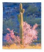 Ironwood Saguaro Dance Fleece Blanket