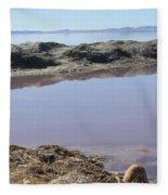 Island In The Desert Fleece Blanket