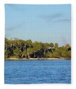 Island Off Of Cedar Key Fleece Blanket