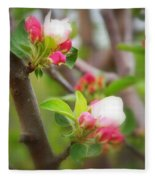 It Is Spring Time In The Annapolis Valley Fleece Blanket
