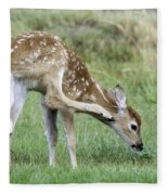 Itchy Fawn Fleece Blanket