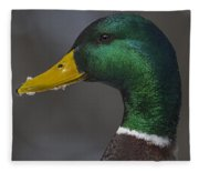 It's Not Easy Bein' Green Fleece Blanket