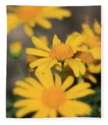 It's Your Day To Shine Fleece Blanket