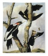 Ivory-billed Woodpeckers Fleece Blanket