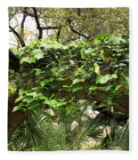 Ivy-covered Arch At The Alamo Fleece Blanket