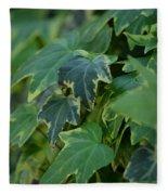 Ivy Greens Fleece Blanket