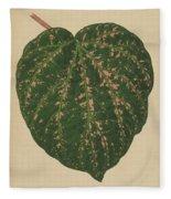 Ivy Leaf, Cissus Porphyrophyllus  Fleece Blanket