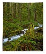 Lifeblood Of The Rainforest Fleece Blanket