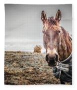 Jacketed Horse Fleece Blanket