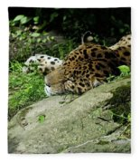 Jaguar Fleece Blanket