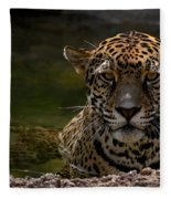 Jaguar In The Water Fleece Blanket