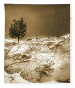 January 7 2010 Fleece Blanket