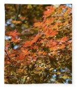 Japanese Maple Beauty Fleece Blanket