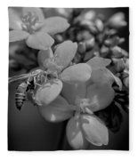 Jatropha Blossoms Wasp Painted Bw Fleece Blanket