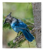 Jay Bird Fleece Blanket
