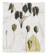Jeffersonia Diphylla Fleece Blanket