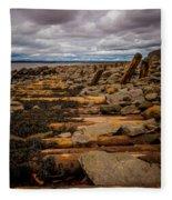 Joggins Fossil Cliffs Fleece Blanket
