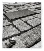 John Kennedy Gravesite Fleece Blanket