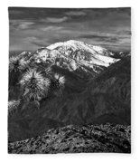 Joshua Tree At Keys View In Black And White Fleece Blanket