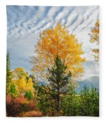 Jughandle Mountain Fleece Blanket
