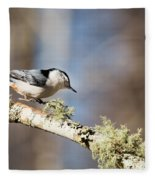 Jump - White-breasted Nuthatch Fleece Blanket
