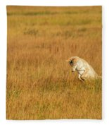 Jumping Coyote Fleece Blanket