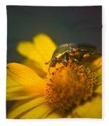 June Beetle Exploring Fleece Blanket
